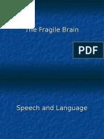 The Fragile Brain