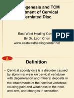 Cervical Disc 1