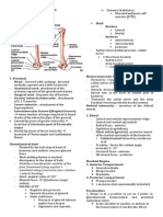Anatomy - Aug 14, 2013 - Dr. Abiog