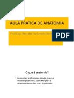 1.A AULA PRÁTICA ANATOMIA -facsul (1).pdf
