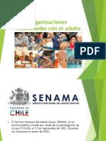 SENAMA Y PROGRAMA DE SALUD DEL ADULTO.pdf
