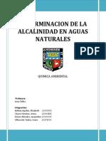 Alcalinidad Mesa6.docx