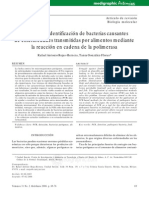 bacterias causantes de enfermedades-polimerasas.pdf