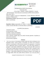 Europa Antiinquinamento 2013 Quinamento l'Europa Bacchetta l'Italia Per i Superamenti Dei Limiti Ia_00317