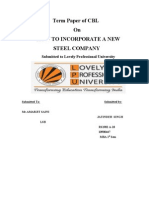 Term Paper Law Steel Sector
