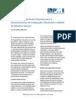 Gerenciamento da Integração.pdf
