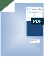 Informe Madden.docx