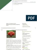 ESCRITORES Y CANALIZADORES_ 30 MOTIVOS PARA CONSUMIR GANODERMA (reishi).pdf