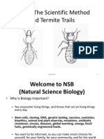 Lab 1 – The Scientific Method and Termite Trails Fall 2014