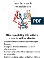 Lab 4 - Enzymes and the Catalase Lab Fall 2014