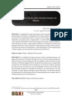Identidade negra brasil.pdf