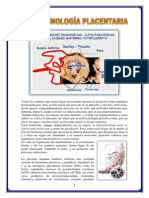 endocrino.docx