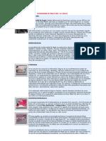 ENFERMEDAD DE PAGET.pdf