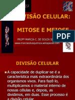 Divisão Celular - Mitose e Meiose