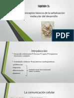 Exposicion de Embriologia