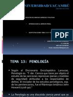 Introduccion Derecho Penal (Sustitutiva Temas 1314 y 15
