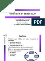 25-ProteccionAnillosSDH_1pp