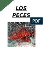 lospeces-110510064922-phpapp02