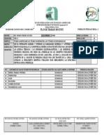 FORMATO PLAN DE TRABAJO AGOSTO 2014 - ENERO 2015.docx