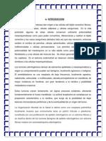 tumores-EXPO.docx