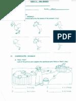 prueba inglés ( the animals) tercero básico