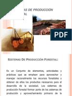 Sistemas de Producción Forestal