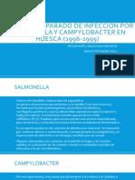 Estudio Comparado de Infección Por Salmonella y Campylobacter