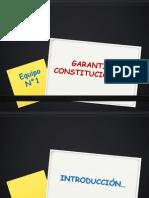 Garantias Constitucionales. Equipo 1