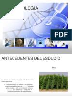 biotecnologia1-100609185458-phpapp02 (2)
