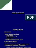 Sistem Vaskuler