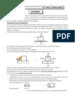 Guía Nº 5 - Dinámica