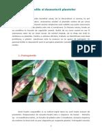 Bolile Si Daunatorii Plantelor