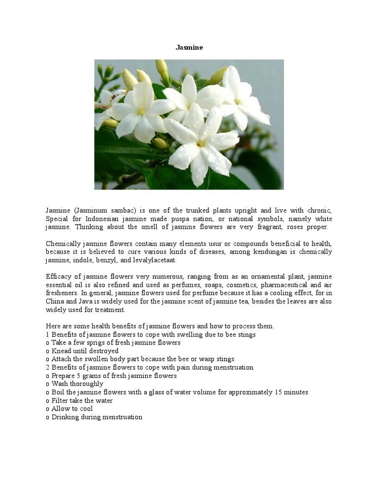 Jasmine Flowers Perfume