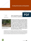 Congo Basin Countries Lose Out