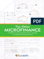 The Other Microfinance