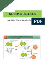 ACIDOS NUCLEICOS2014