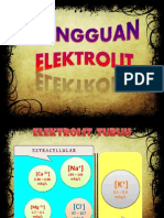 ggn_elektrolit[1]