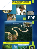 Avances en Biotecologia Aplicada Reproduccion Gamitana 2014