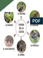 Fauna-de-la-costa.docx
