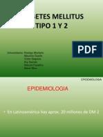 dm-tipo-1-y-2-2008-1230497435448955-1