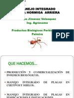 Conferencia Hormiga Arriera