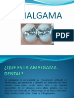 cfakepathamalgama-091002150311-phpapp02