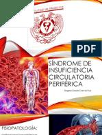 Síndrome de Insuficiencia Circulatoria Periférica