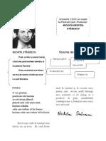 Nichita Stanescu Fisa Schematica de Afisat A4
