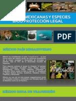 Especiesmexicanas y Especies Bajo Protección Legal1