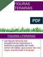 Figuras Literarias CAE