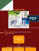 7536_Aminoglycoside