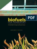 E-book_bioenergy for Transport