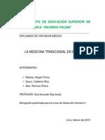 142228449 Medicina Tradicional en El Peru