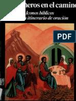 Aleixandre Dolores - Compañeros En El Camino.pdf